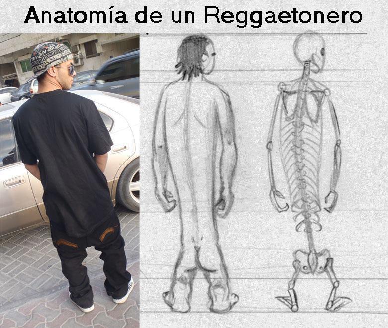 Anatómia atlasz kiegészítés a speciális létformáról :)