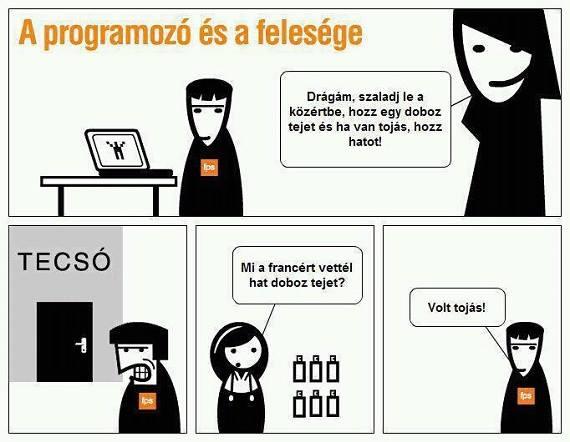 A programozó és a felesége
