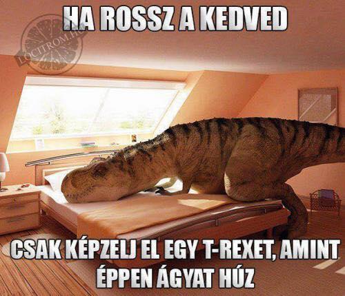 Szegény T-Rex :)